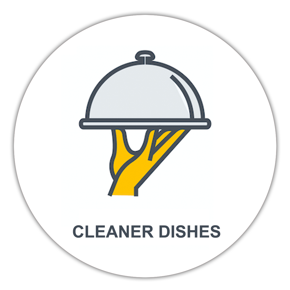 cleaner dishes with vital water company water